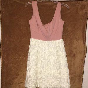 Blush and Ivory Flower Mini Dress